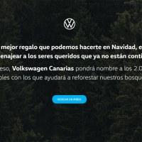 Volkswagen Canarias pondrá nombre a los 2.000 árboles donados para la reforestación.
